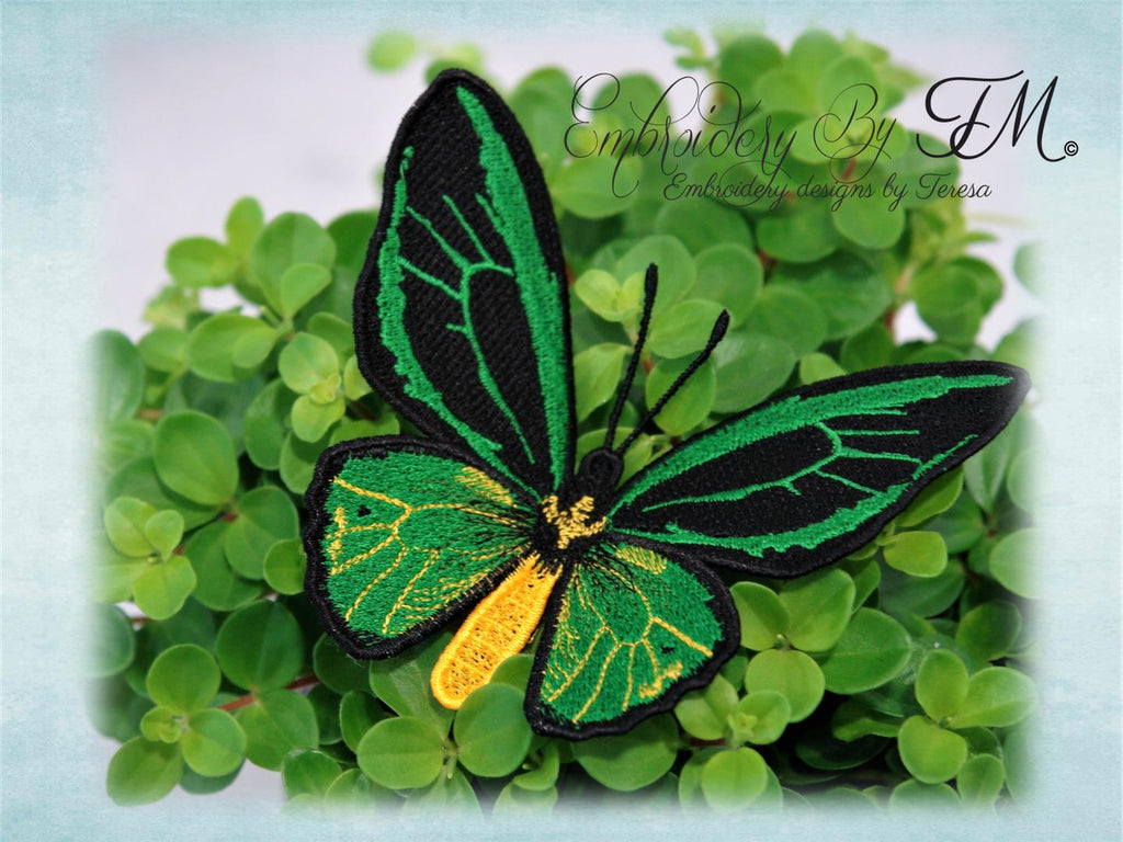Butterfly colors/ three sizes