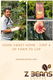 Coffee bean processing: farm to cup