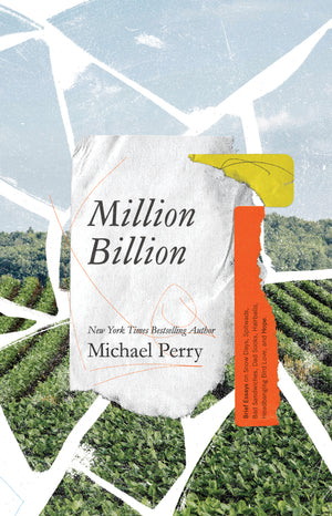 Million Billion: Brief Essays on Snow Days, Spitwads, Bad Sandwiches, Dad Socks, Hairballs, Headbanging Bird Love, and Hope
