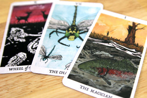 Rust Belt Arcana Tarot Deck and Book Bundle - Belt Publishing
