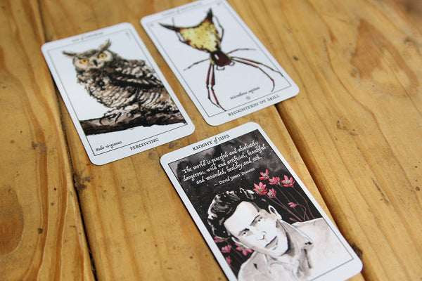 Rust Belt Arcana Tarot Deck and Book Bundle