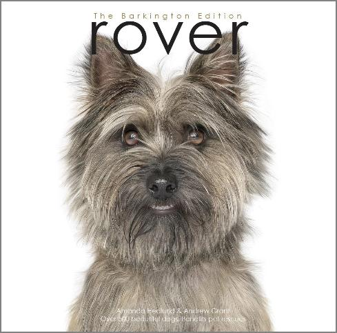 Rover Barkington Edition