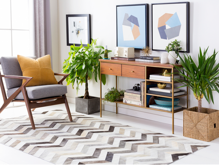 Chevron Hair on Hide Rug