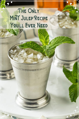 Retro Cocktails Mint Julep