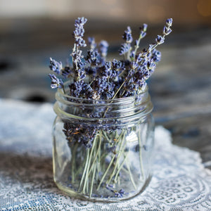 Lavender in an old fashioned mason jar