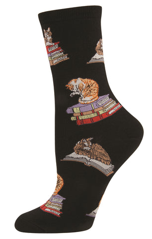 cat on books socks