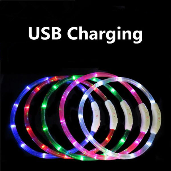 USB Rechargeable Flashing Night Dog Collars