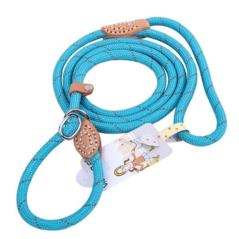 Breakaway Pet Dog Leash Lead