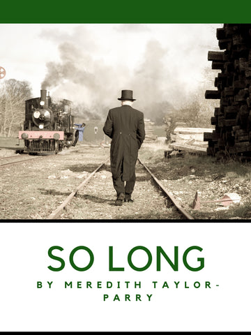 So Long by Meredith Taylor-Parry