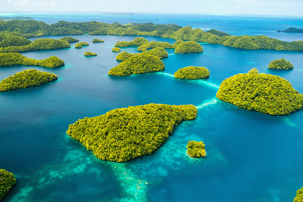 Palau bans a large number sunscreens to protect the reefs
