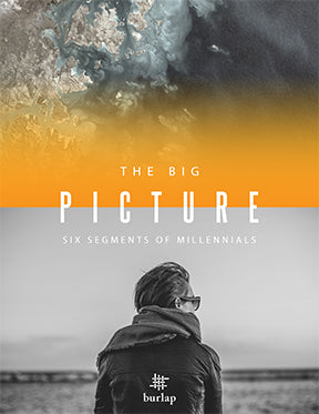 The Big Picture: Six Segments of Millennials--(download)