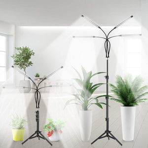 Full Spectrum Floor Lamp Plant Light for Indoor Plants