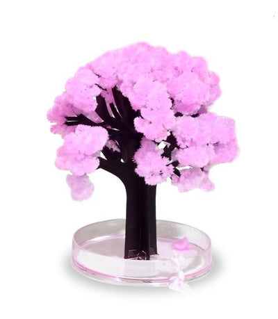 Magic Sakura Tree Give Simple