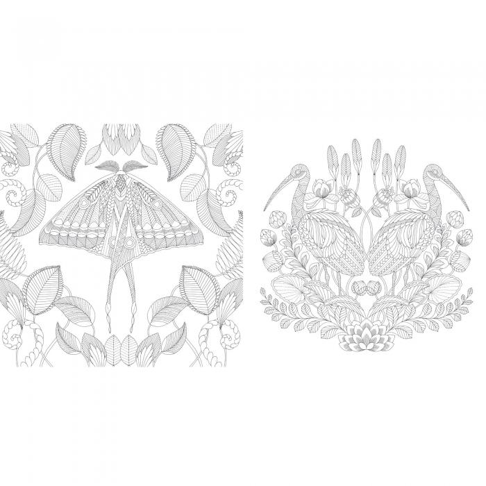 Tropical World Grown Up Coloring Book - Give Simple