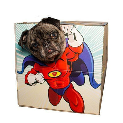 Pet Adventures PhotoBooth Give Simple