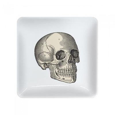 Skull Vintage Tray Gent Supply Co.