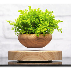 The Magnetic Levitating Plant Pot