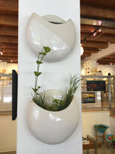 Per le Erbe- Wall Mounted Vase
