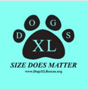 PUPPIE LOVE™ & DOGS XL RESCUE!