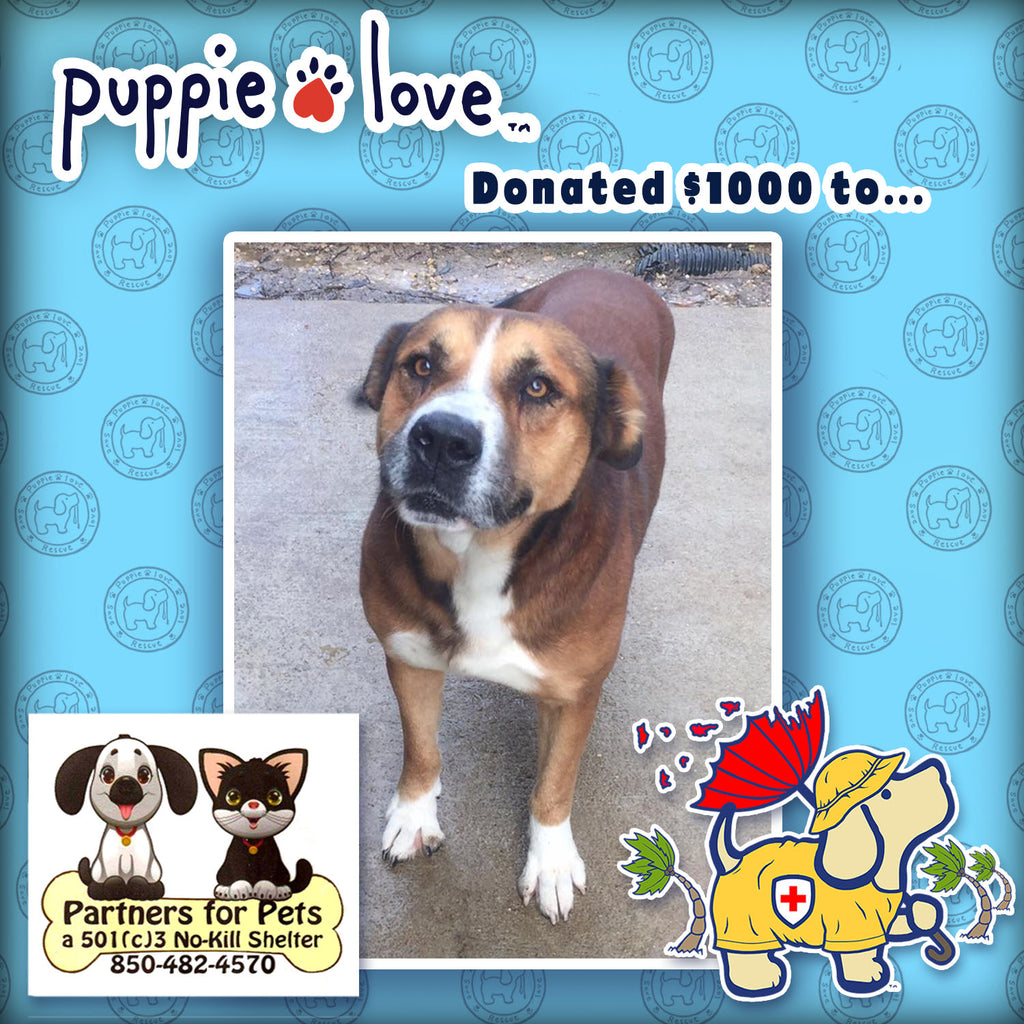Puppie Love®  Helps Dogs Displaced by Hurricane Michael by donating to Partners for Pets!
