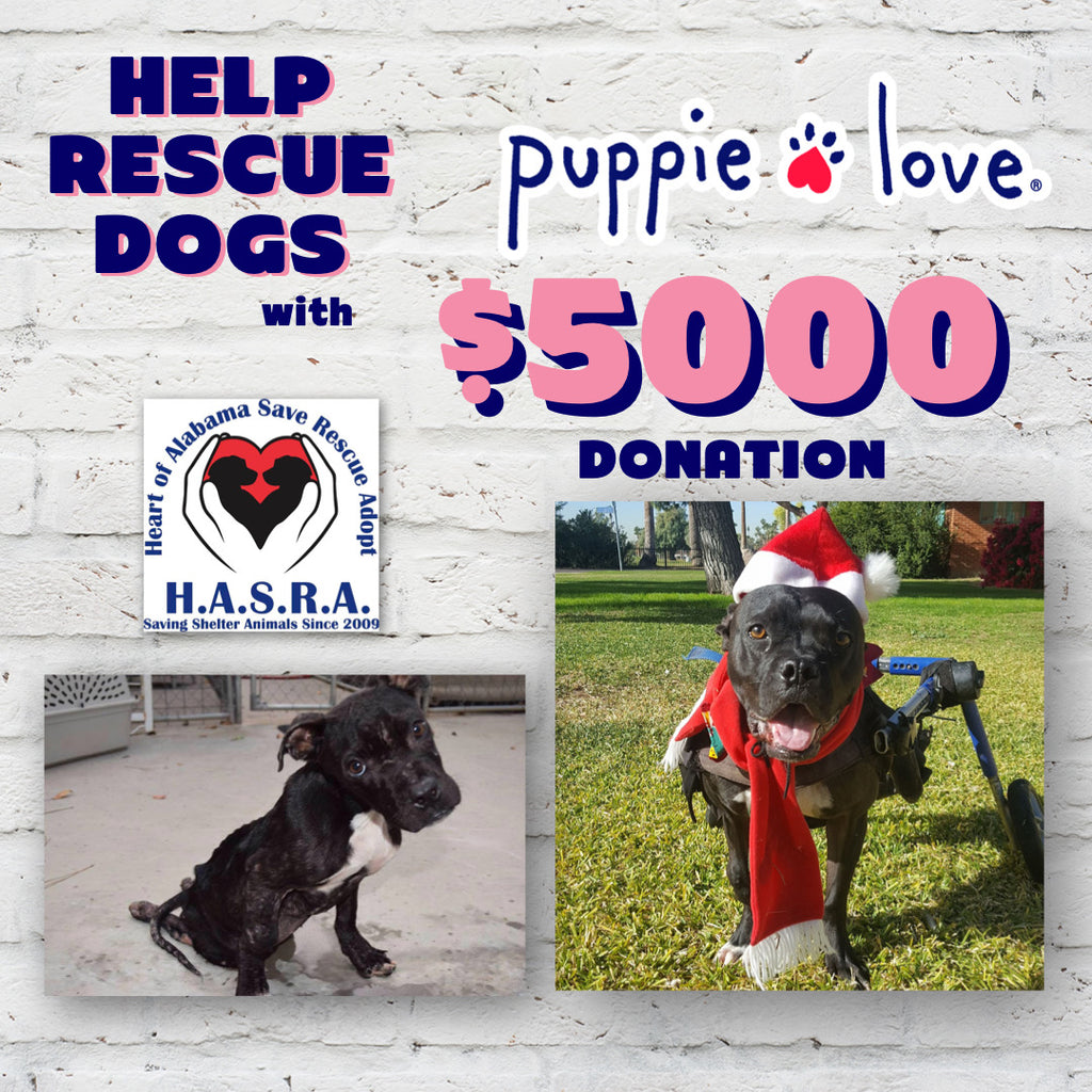 Puppie Love® donates to HASRA (Heart of Alabama: Save, Rescue, Adopt)