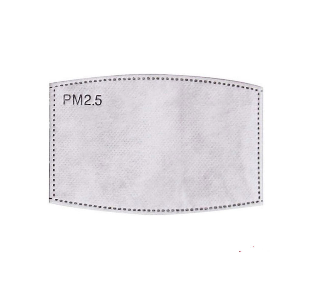 Replacement five-layer PM2.5 filter - pack of 2