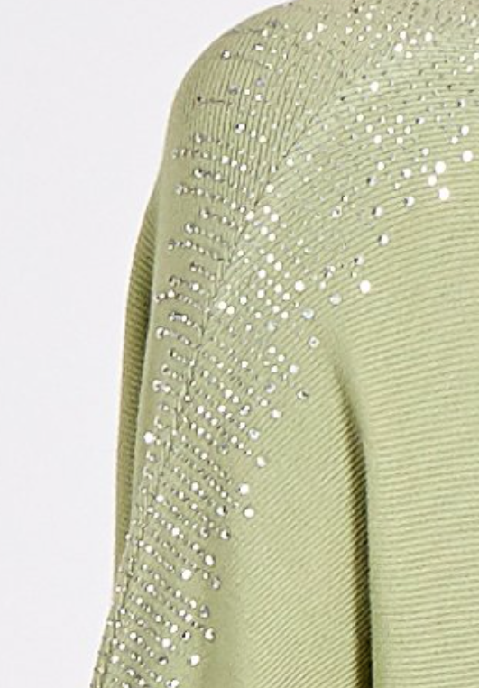 Lainey Batwing Embellished Sleeve in Green