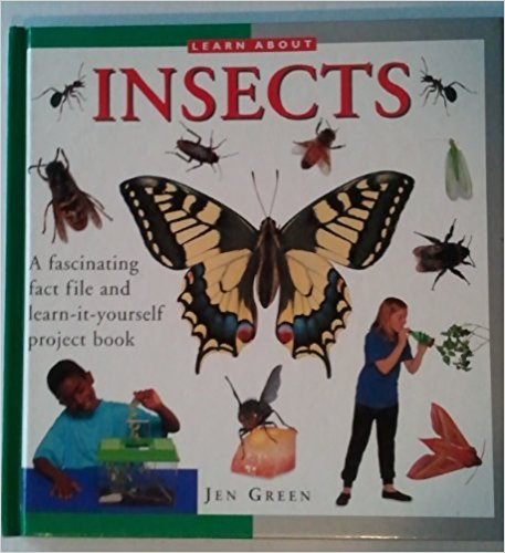 Learn About Insects