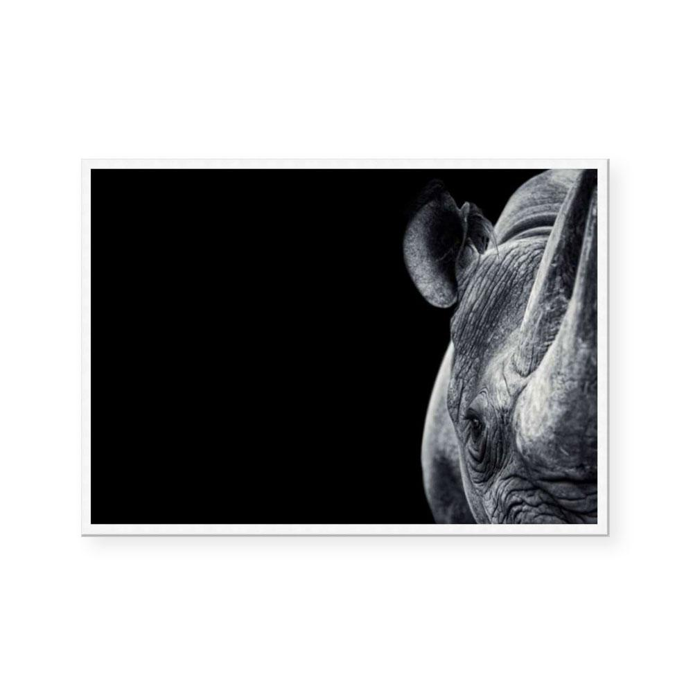 Monochrome Savanna Rhino