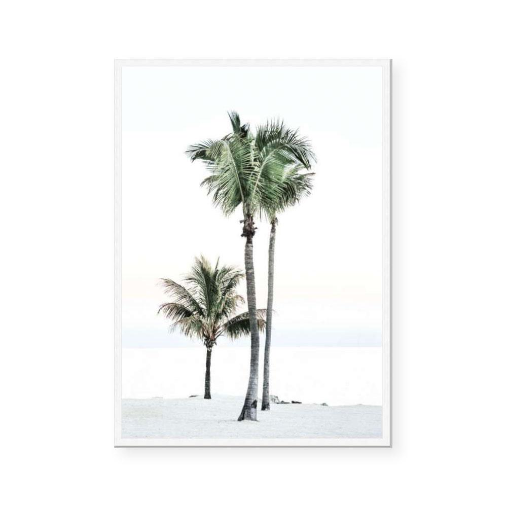 Peaceful Palms I