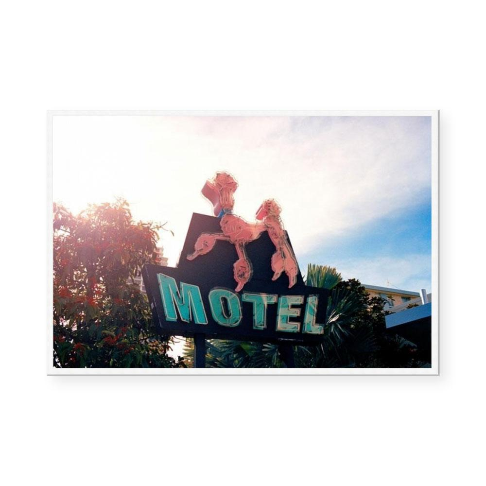 Pink Poodle Motel | Limited Edition Art Print | Brett Goldsmith
