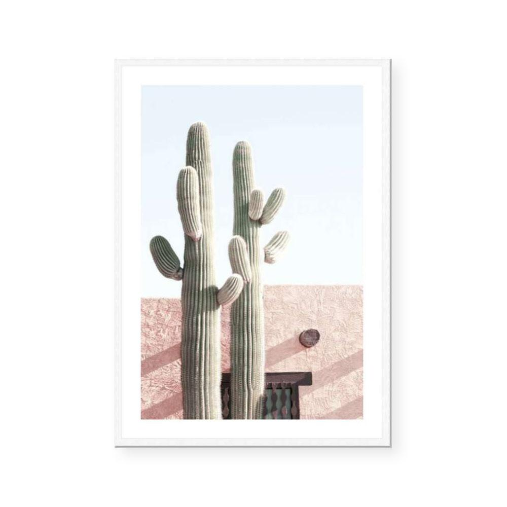 Two Cactus