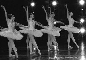 Collection: Dance In Focus/Anatomy of A Ballet