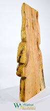 "Load image into Gallery viewer, ""The Wingman"" Sculpture by Nicholas A. Price from the Wood Spirits Collection"