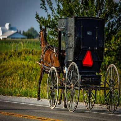Amish Harvest (PEAK)
