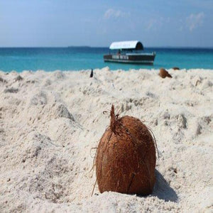 Aruba Coconut (PEAK) DISCONTINUED  WHILE SUPPLIES LAST