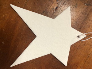 Star air freshener blanks