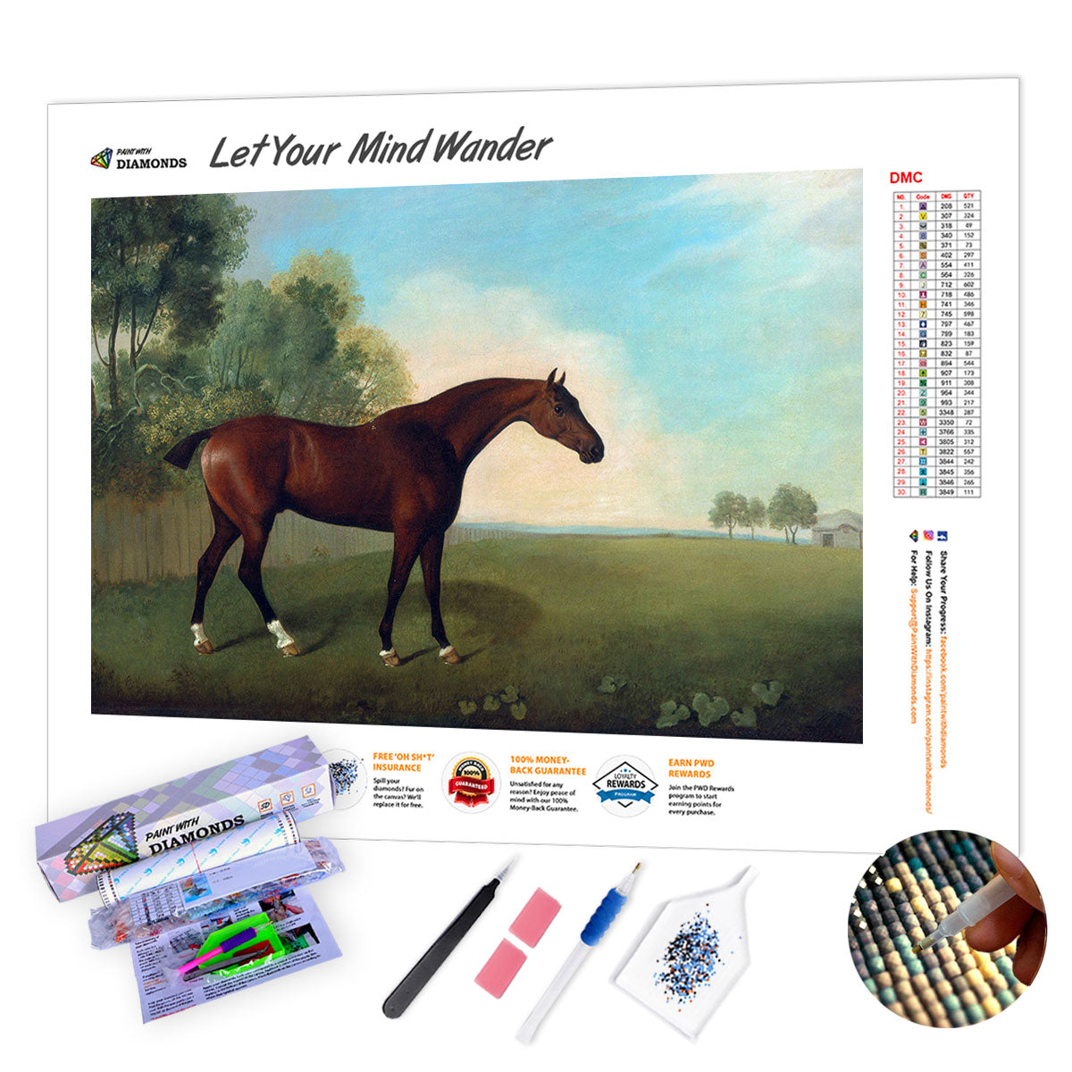 Bay Horse In A Field