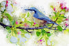 Spring Bird Watercolor