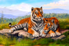 Two Tigers Relaxing