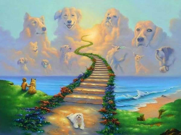 Religious Diamond Painting Kit - All Dogs Go To Heaven 2-Square 15x20cm- - Paint With Diamonds