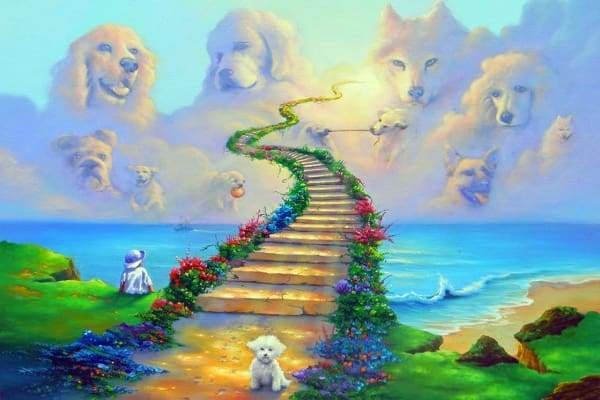 Religious Diamond Painting Kit - All Dogs Go To Heaven-Square 20x30cm- - Paint With Diamonds