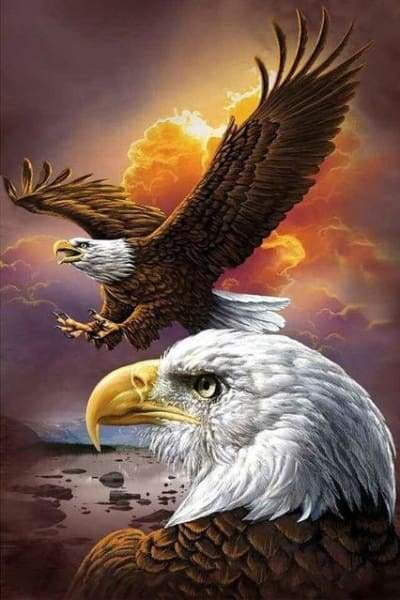 Eagle Diamond Painting Kit - America The Beautiful-Square 20x30cm- - Paint With Diamonds