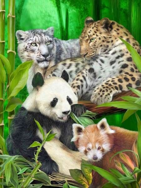 Safari Diamond Painting Kit - Asia Wild-Square 15x20cm- - Paint With Diamonds