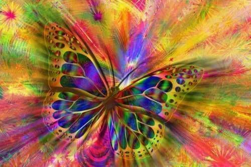 Abstract Diamond Painting Kit - Butterfly Color Trip-Square 20x30cm-