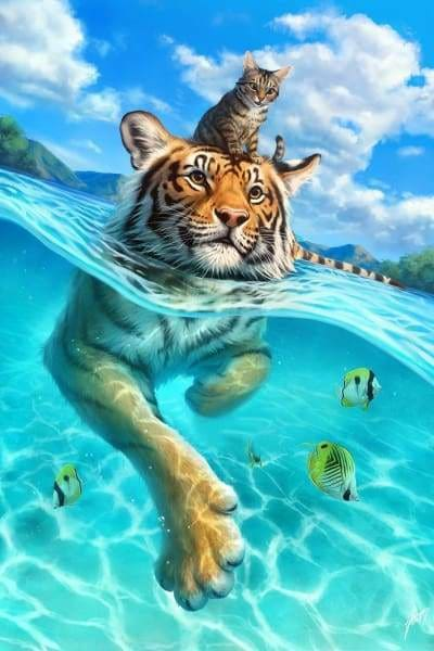 Safari Diamond Painting Kit - Cat In The Water-Square 20x30cm- - Paint With Diamonds