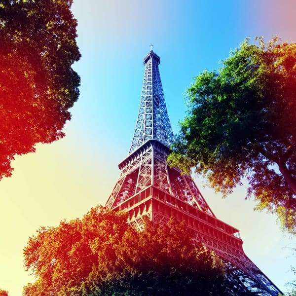 Tree Diamond Painting Kit - Eiffel Tower Filter-Square 20x20cm- - Paint With Diamonds