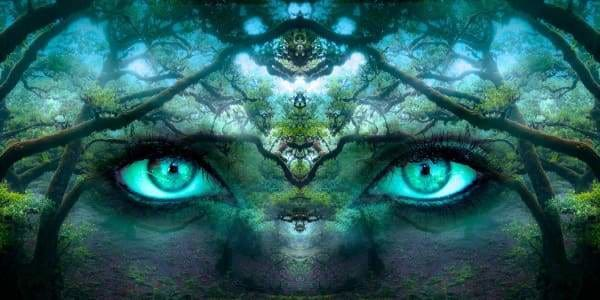 Tree Diamond Painting Kit - Emerald Forest Eyes-Square 40x20cm- - Paint With Diamonds