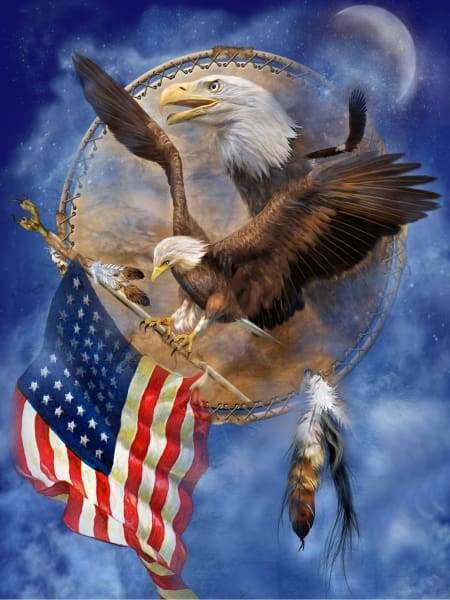 Eagle Diamond Painting Kit - Freedom Eagle Shield-Square 15x20cm- - Paint With Diamonds