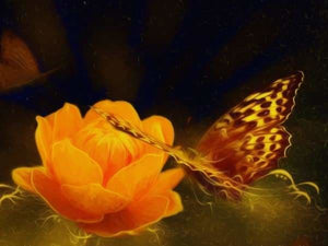 Flower Diamond Painting Kit - Glowing Orange Butterfly-Square 15x20cm- - Paint With Diamonds